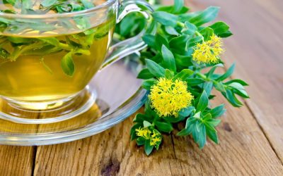 Boostez votre énergie grâce aux plantes adaptogènes